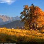 Autumn in the mountains at Czarny Potok hotel