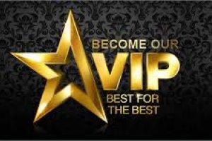Biznes VIP