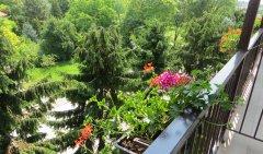 Wczasy wypoczynkowe w Busku-Zdroju