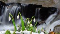 Wiosna Moc Atrakcji (5 Dni)