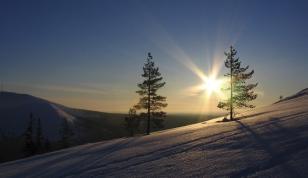 Ferie zimowe 7 dni