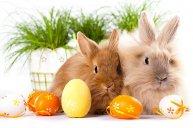Rodzinna Wielkanoc Pakiet dla 3 osób