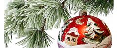 Boże Narodzenie w Sielance