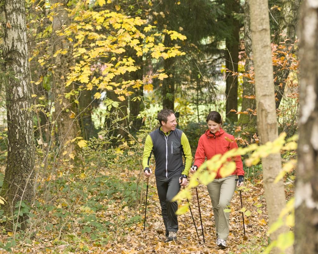 Jesień w Wildze