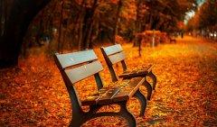Jesienna promocja