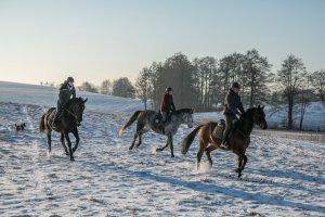 Zimowy pakiet jeździecki
