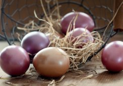 Wielkanoc w Pałacu Sieniawa