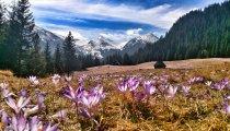 Wiosna w Górach (3 dni)