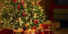 Pakiet Świąteczny Pięciodniowy 2014