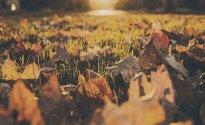 Goldener Oktober (2 Übernachtungen)