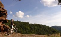 Auf Tour im Mountainbike-Park Pfälzerwald